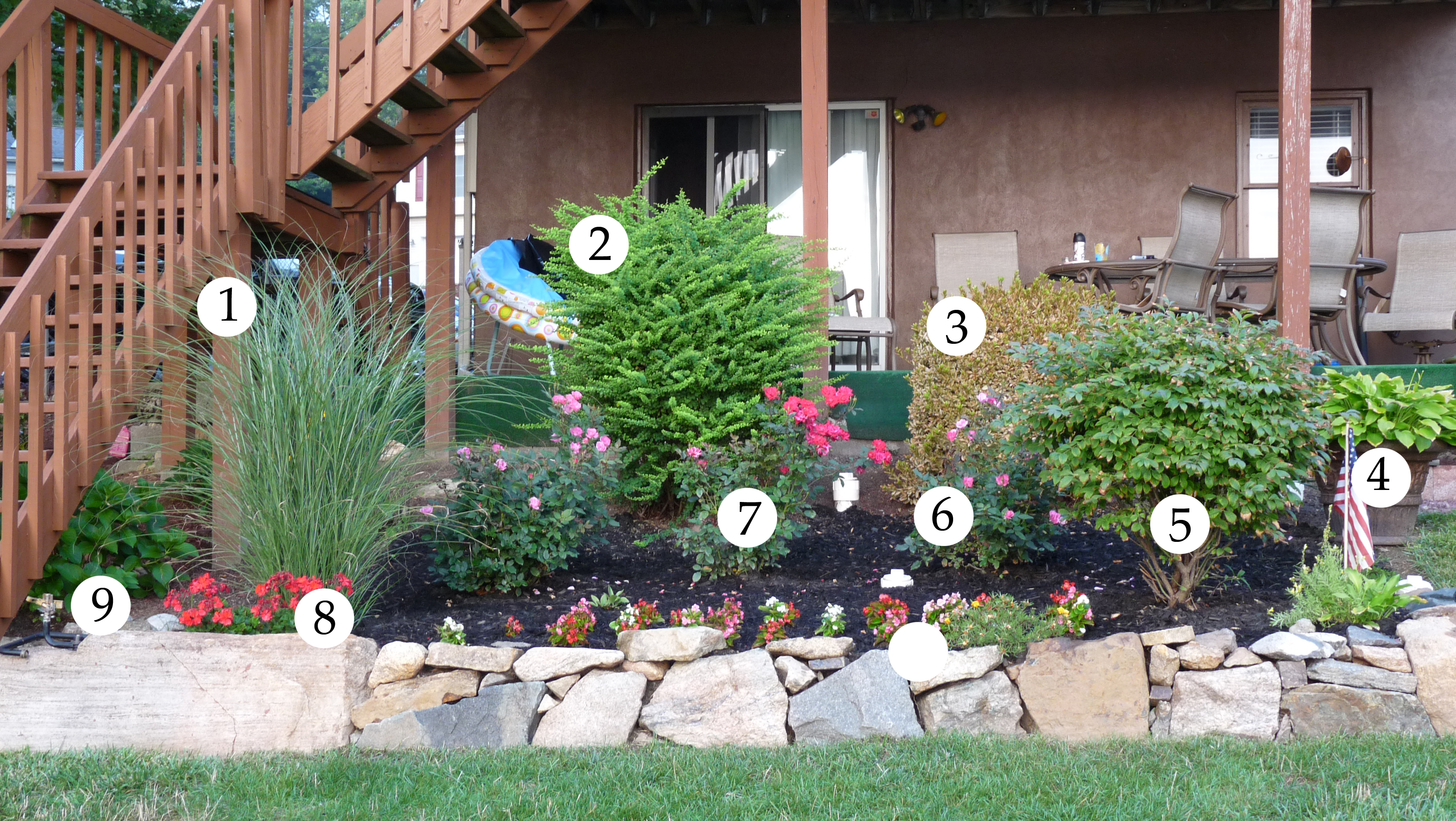 Our lake life how does your garden grow our lake life for Plants for front of house
