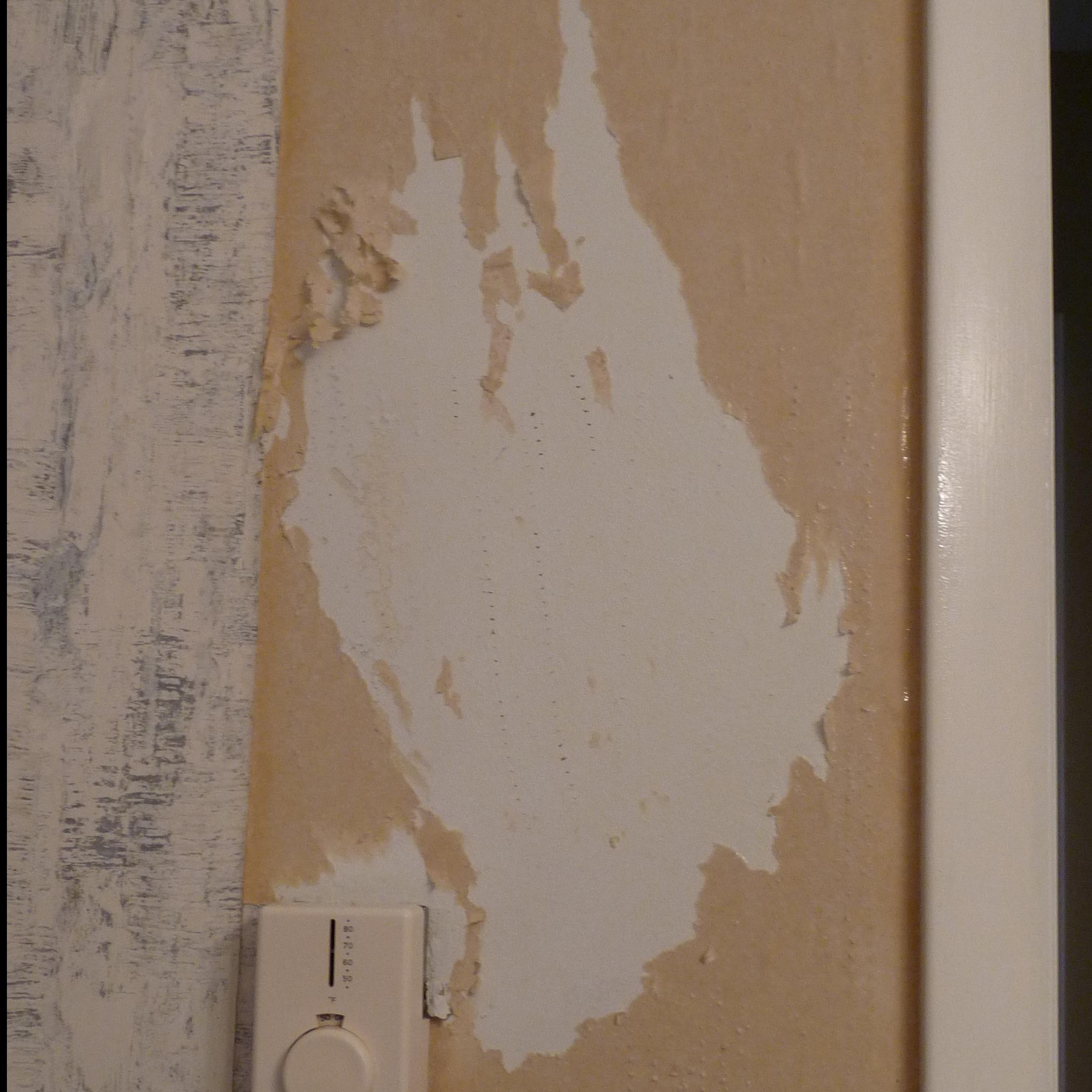 fabric softener to remove wallpaper release date price