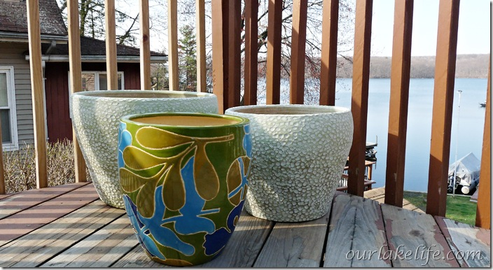 Flower Pots from Home Goods