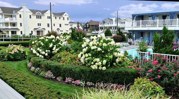 Ocean City Gardens 3