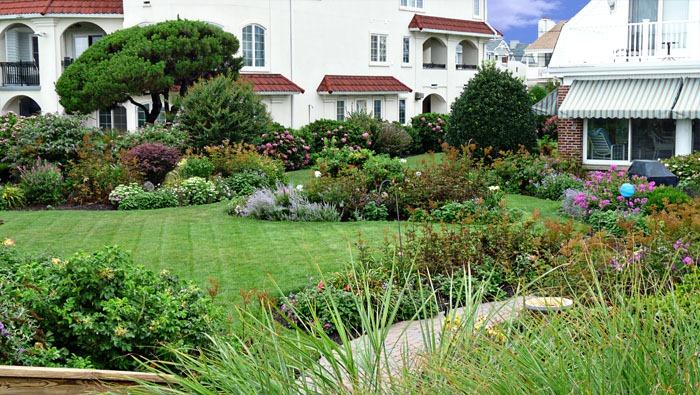 Ocean City Gardens 4